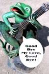 Frosch mit Gitarre - lustiger Spruch