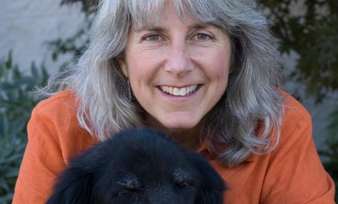 Nancy-Kay-Summer-Dogs-Heat-Tips-Spry