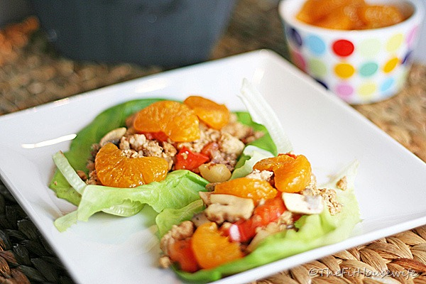 asian-chicken-lettuce-wraps-quick-health-easy-lunch-dinner-spry