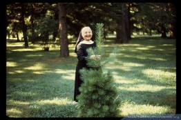Sister Georgiana Terstegge on the motherhouse grounds of Saint Mary-of-the-Woods, Indiana. Sister Georgiana, a Saint Mary-of-the-Woods College professor, established the SMWC Tree Club in 1972 with annual dues of one dollar to help keep the motherhouse grounds forested.