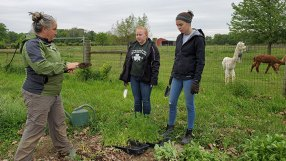 Education is an important aspect of our ministry. Ann Testa, farm projects assistant, helps the students in the garden.