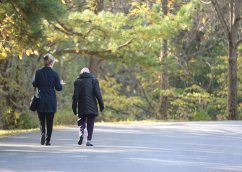 Candidate Rita O'Donohue and her sister companion Sister Mary Rita Griffin walk and talk.
