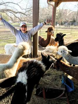 Sister Joni fills in caring for the alpacas over the 2020 Christmas holiday
