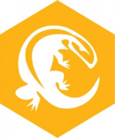 ActiveState Komodo IDE 11.0.1.90797 Crack