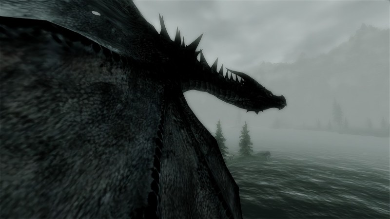 Here's a dragon, to make everything better.