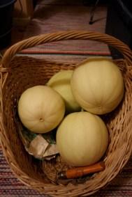 Melonskörd. oktober14