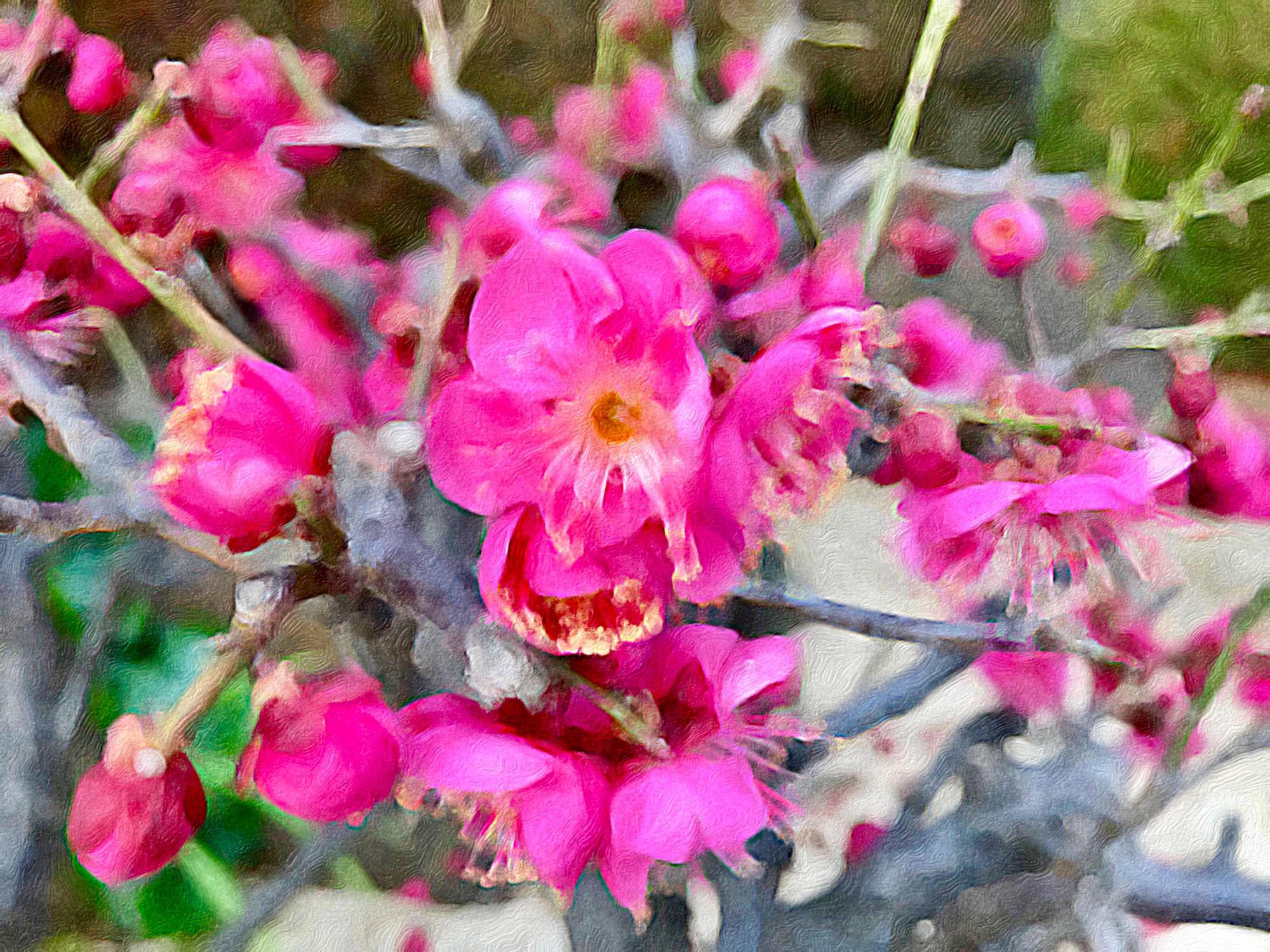Flüchtige Blüte