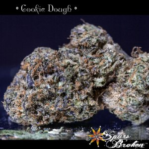 Cookie Dough - Cannabis Macro Photography by Spurs Broken (Robert R. Sanders)