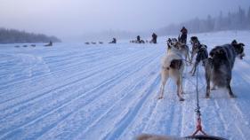 2013 02 11 P2112855 Husky ride