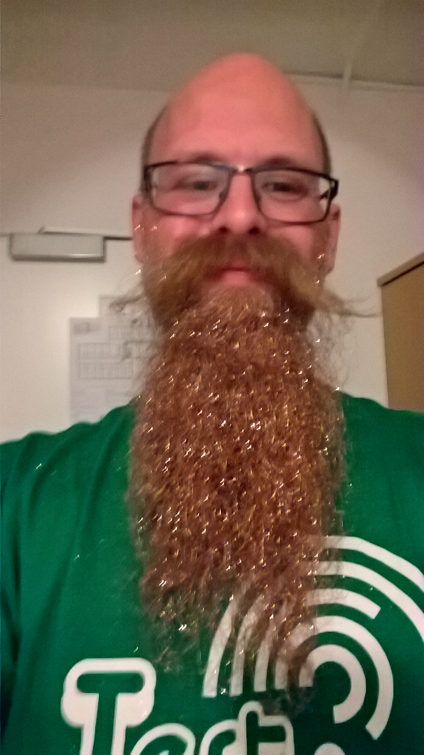 The glitter beard in Slovenia. even the next day there was glitter on many speakers