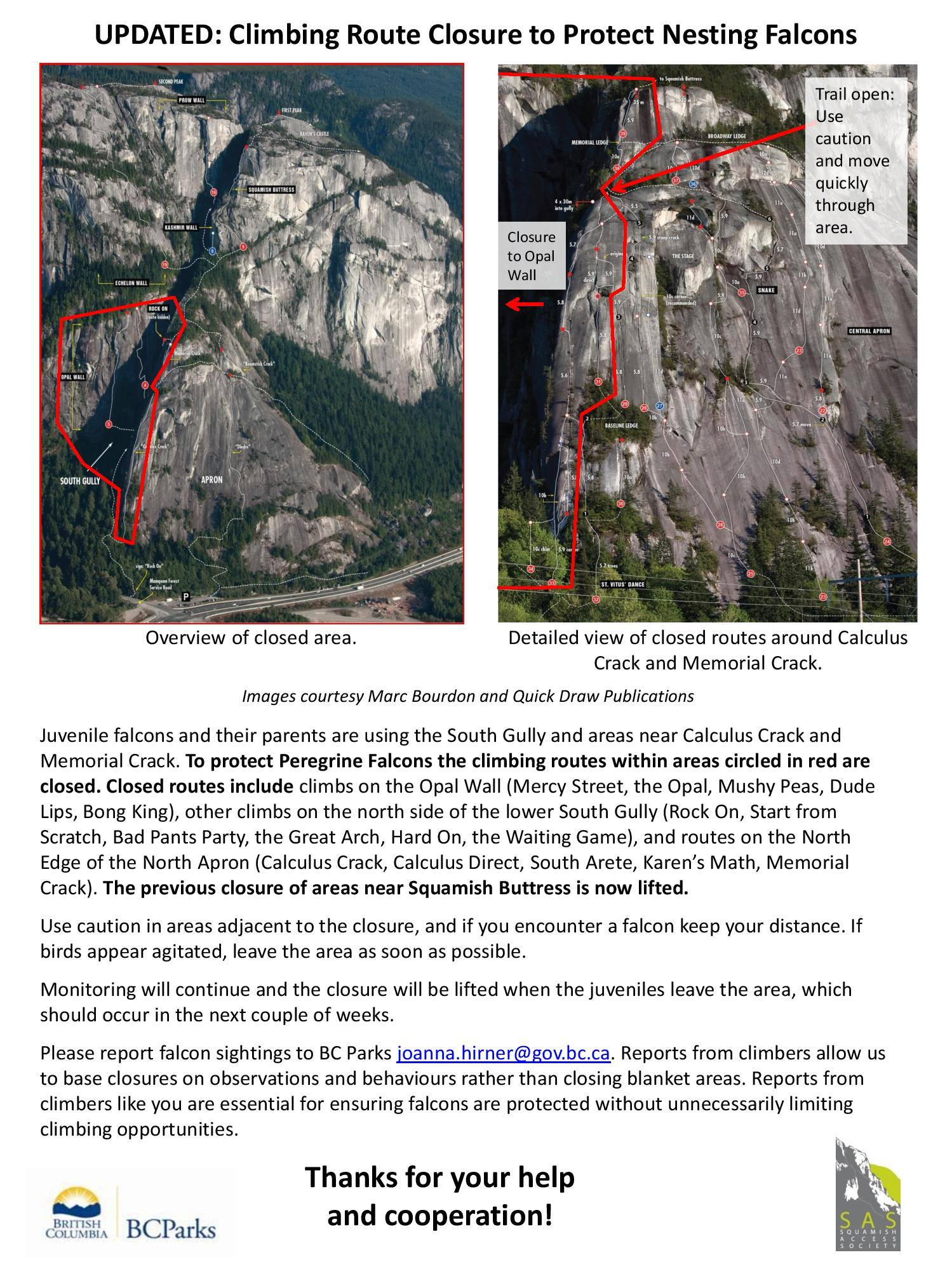 Bc Parks And Volunteer Climbers Are To Continue Falcon Monitoring And Potentially Lift This This Closure In The Next Couple Weeks As The Fledglings Appear