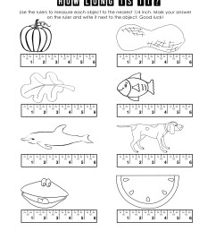 First Grade Measurement Worksheets   Printable Worksheets and Activities  for Teachers [ 3300 x 2550 Pixel ]