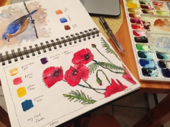 preliminary-sketches-of-poppies-and-bird