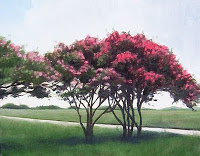 5 Fastest Growing Trees to Shade Your House and Add Color to Your Yard
