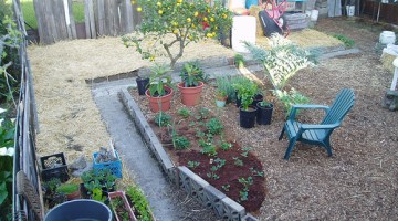 The Secret to Much Easier Gardening: Simple Sheet Mulch