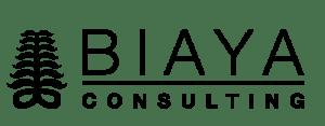 Biaya Consulting