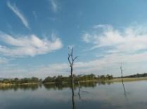 Looking for a fishing spot Lake Kariba.