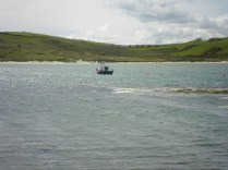 Moored in Ring.