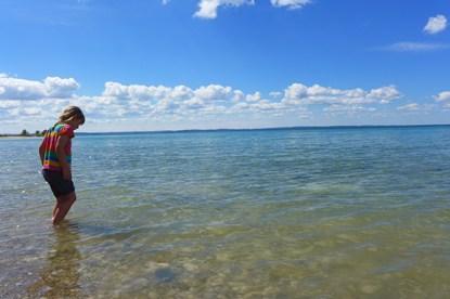 Lake Michigan at Thorne Swift Nature Preserve