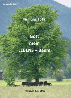 Motto der Firmung 2012