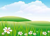 meadow illustrations and clipart