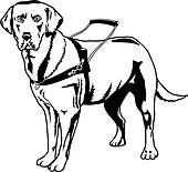 Guide dog Clip Art and Illustration. 76 guide dog clipart