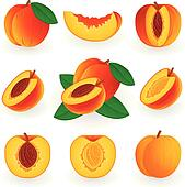 peach slice clipart and illustration