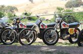 Impressive line-up of XT/TT 500s.