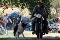 Man's best friend - his motor-sickle!