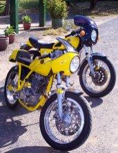 Mellow yellow, Koetong 2001