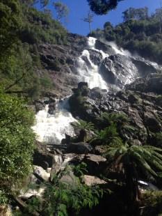 St Columba Falls, nr Pyengana.