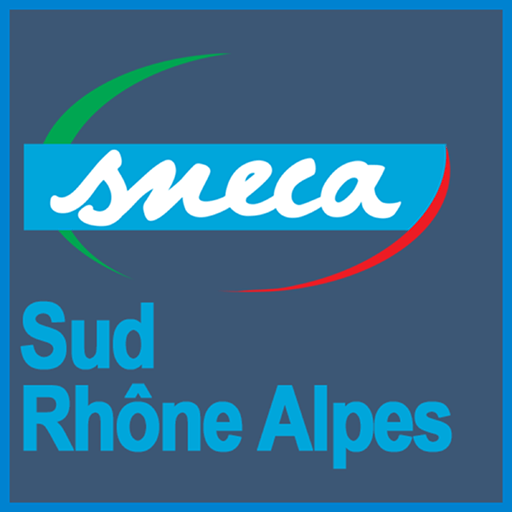 CSE Sud Rhone Alpes – Séance du 12 juin 2019