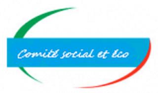 CSE Sud Rhone Alpes – Séance du 22 mars 2019