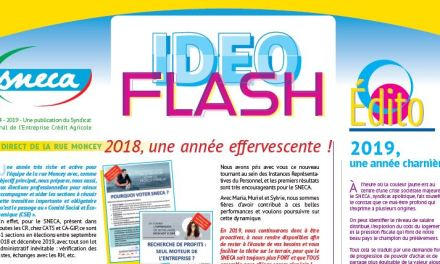 L'Ideoflash 2019 du Sneca est disponible