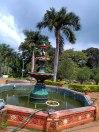 Napier Museum Garden