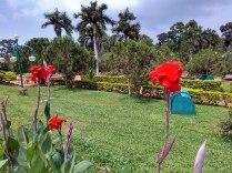Trivandrum Zoo Gardens