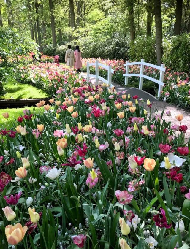 Keukenhof in Olanda è un parco da vedere almeno una volta nella vita: un posto indimenticabile!