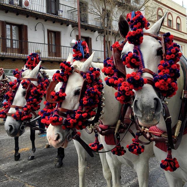 Siviglia in Spagna è una città molto tradizionalista: le feste qui sono molto sentite