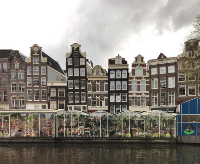 Il Bloemenmarkt (il mercato galleggiante dei fiori) è una grande attrazione di Amsterdam