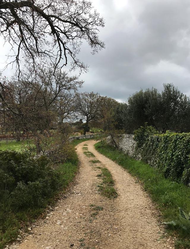 Come visitare la Valle d'Itria? L'auto è la soluzione migliore