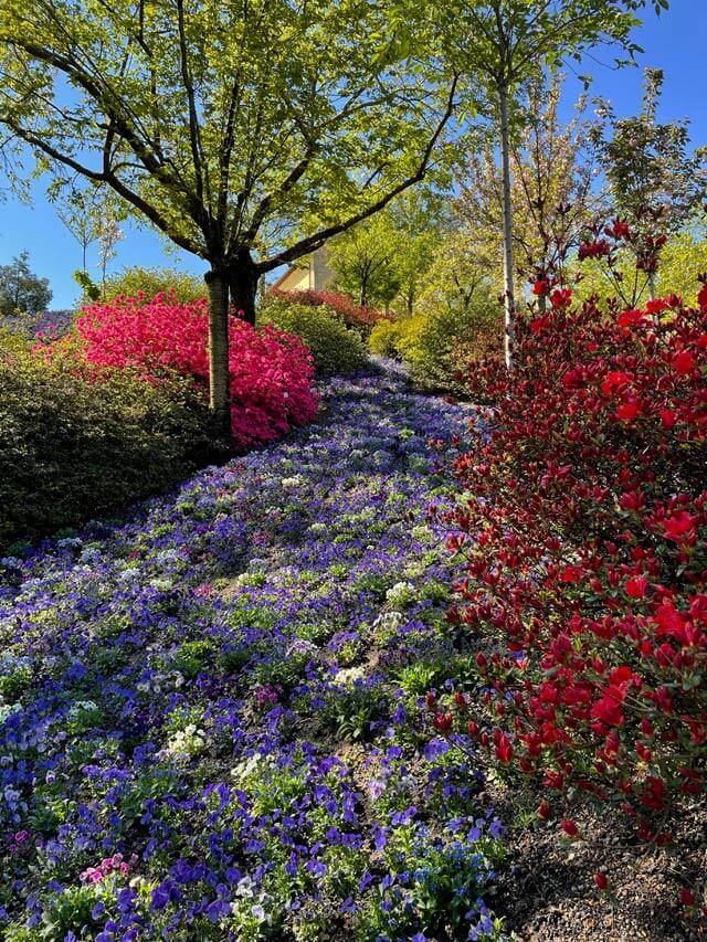 I giardini Trauttmansdorff a Merano sono uno dei Grandi Giardini Italiani