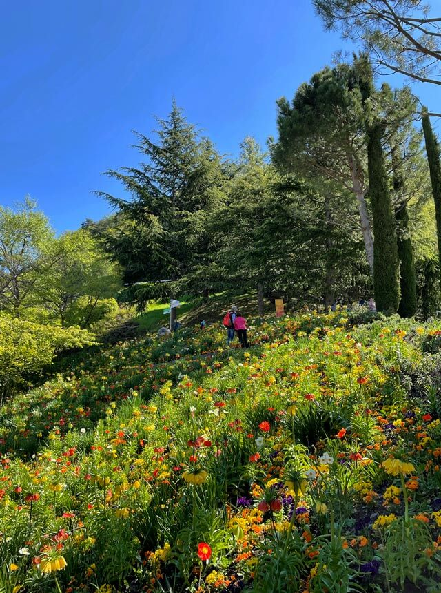 I giardini Trauttmansdorff a Merano sono nei Grandi Giardini Italiani