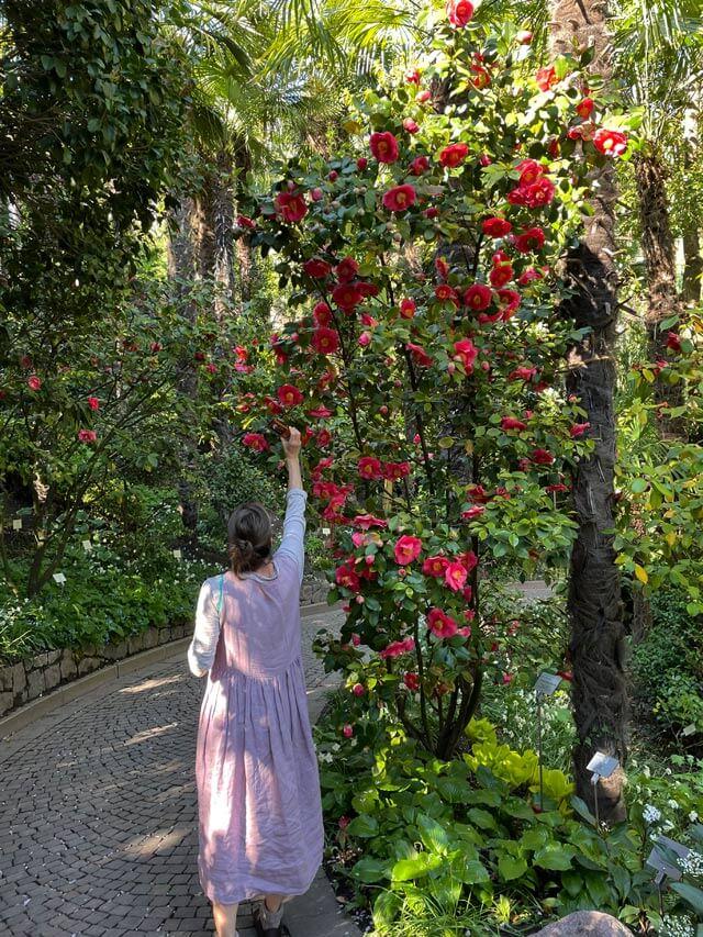 I giardini Trauttmansdorff sono tra i giardini più belli del mondo