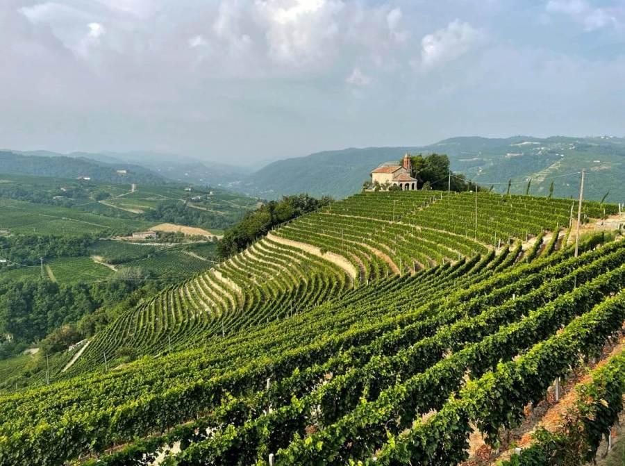 Tour nelle Langhe Monferrato Roero