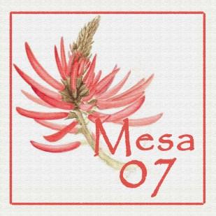 Mesa 07