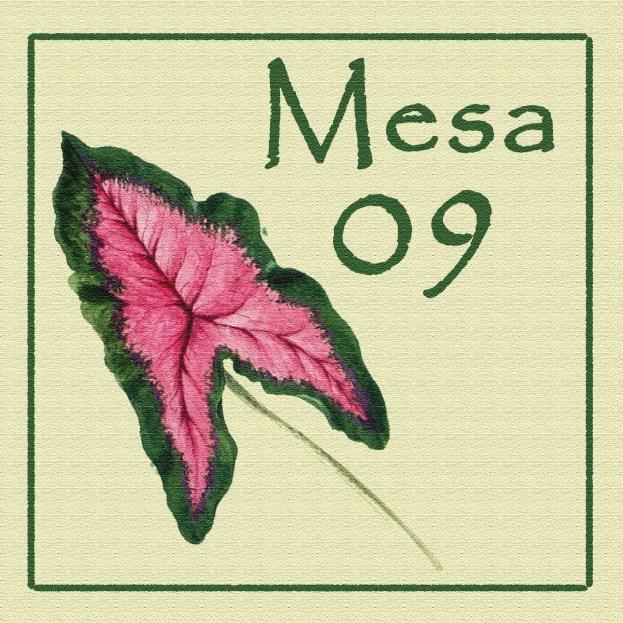 Mesa 09