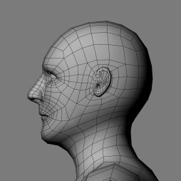 Side_Head_Ivan_Wireframe1