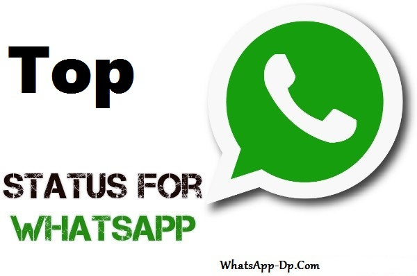 Whatsapp DP Status With Quotes 2019 [Latest Collection] 2