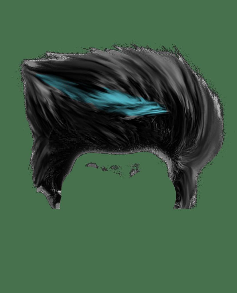 Download Hair: New Hair Png Zip File Download