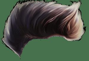 Hair png